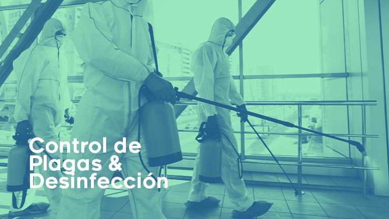 Control de Plagas desinfeccion